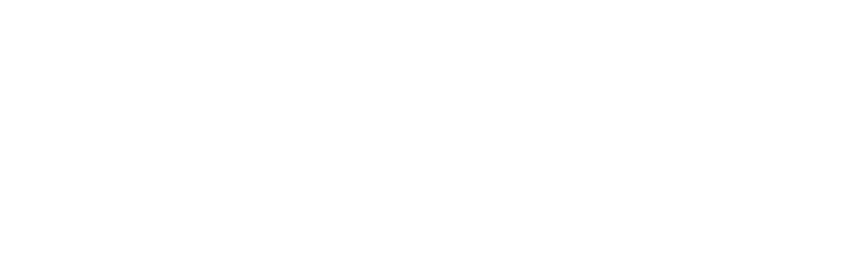 SC-Datalogic-Logo2